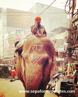 India | Elephant - Mobile Phone